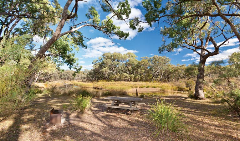 Kings Plains camping area, Kings Plains National Park