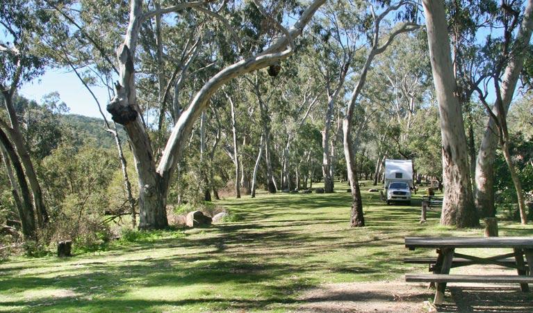 Lemon Tree Flat Camping Ground (Kwiambal National Park)